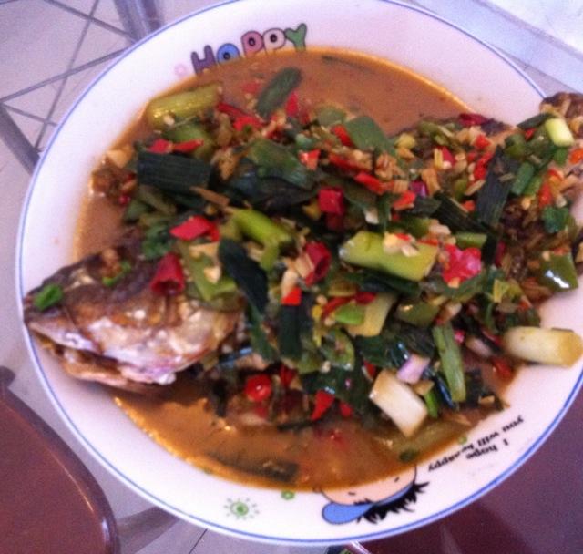 红烧鱼的做法 红烧鱼怎么做好吃 哈伯布哈分享的红烧鱼的...